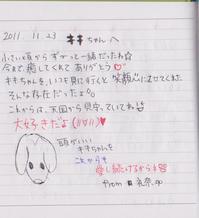 2011.11.22.2.jpg