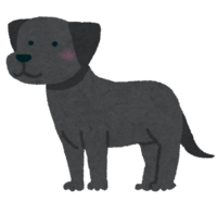 labrador_retriever_black.png
